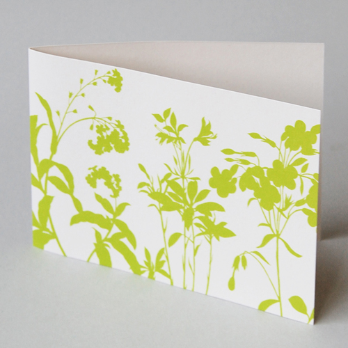 green herbs, great design printed - greeting cards